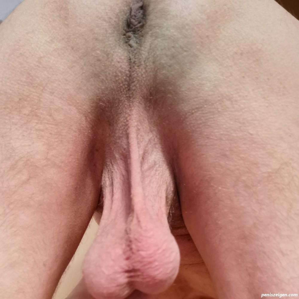 Rasierte Hoden