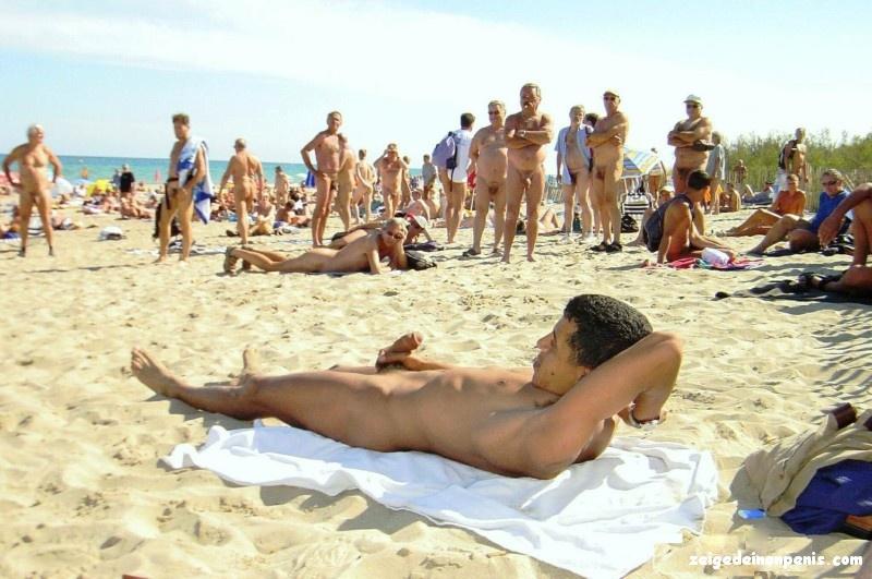 SchwäNze Am Strand